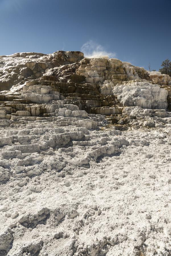 Mammoth Hot Springs Yellowstone imagens de stock royalty free