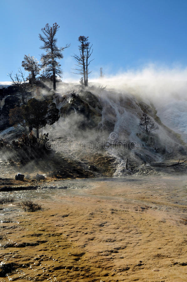 Mammoth Hot Springs yellowstone photographie stock libre de droits