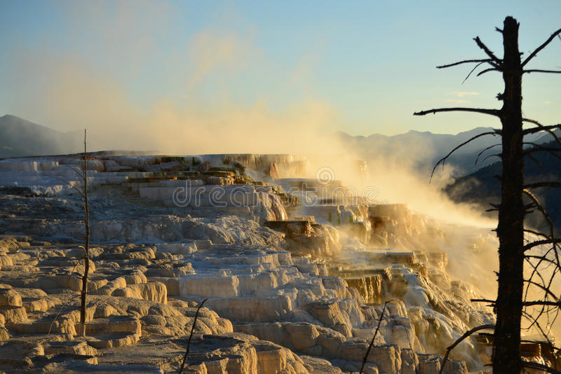 Mammoth Hot Springs in Yellowstone lizenzfreies stockfoto