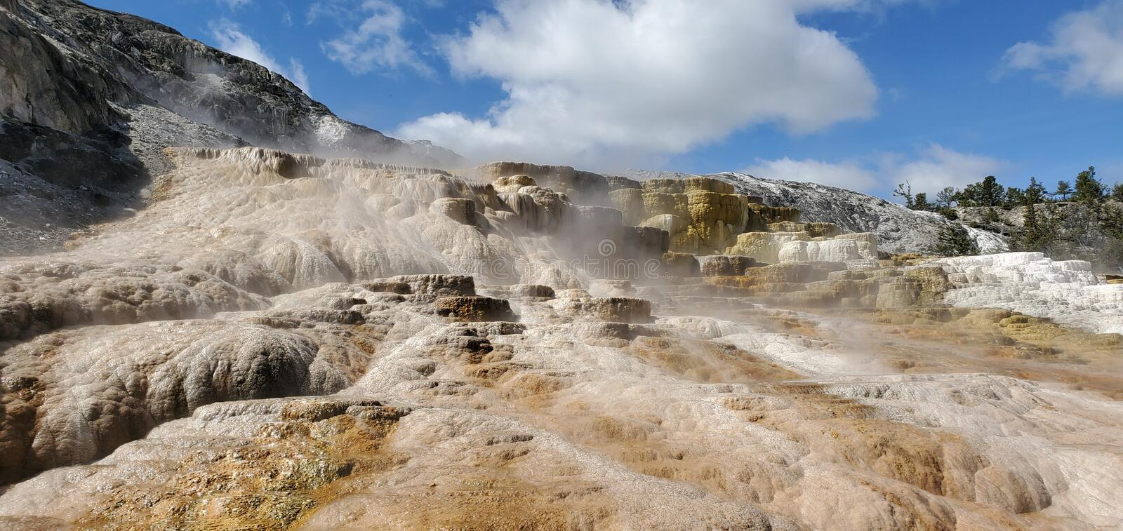 Mammoth Hot Springs in Yellowstone National Park royalty-vrije stock fotografie