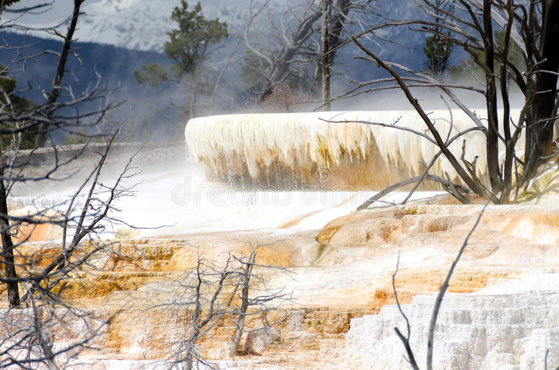Mammoth Hot Springs. In Yellowstone National Park in Wyoming in the United States of America stock photos