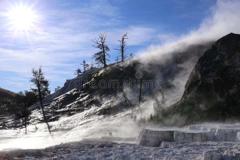 Mammoth Hotspring in the Morning Sun stock image