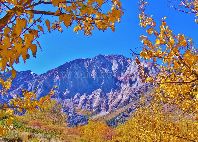 MAMMOTH- MOUNTAINbereich IM FALL stockbilder