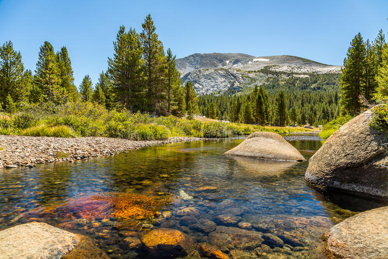 Mammoth Peak from Dana Fork. Mammoth Peak is at the northern end of the Kuna Crest in Yosemite National Park, very close to CA State route 120. Its summit royalty free stock images