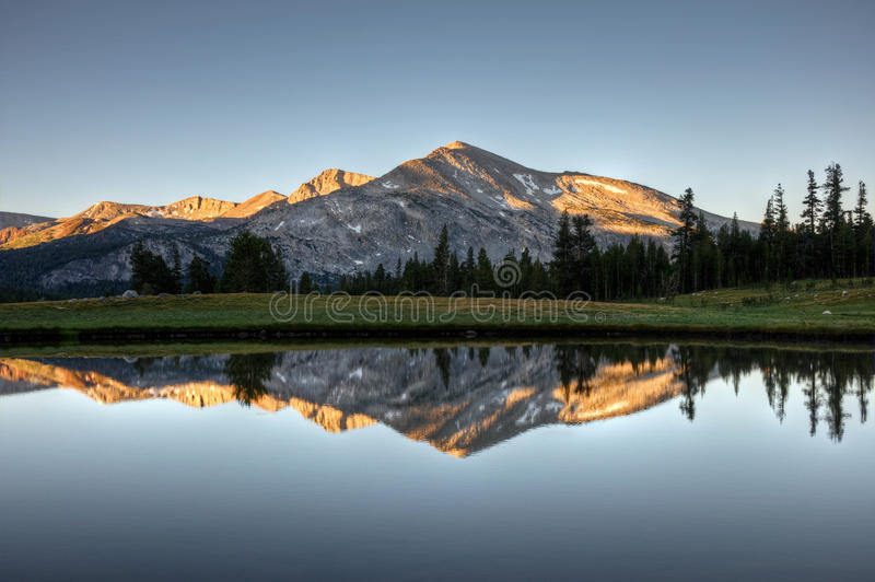 Mammoth Peak Sunrise Reflection. A sunrise reflection of Mammoth Peak and the Kuna Crest on a glacial pond in Dana Meadows, Yosemite National Park, California stock photography