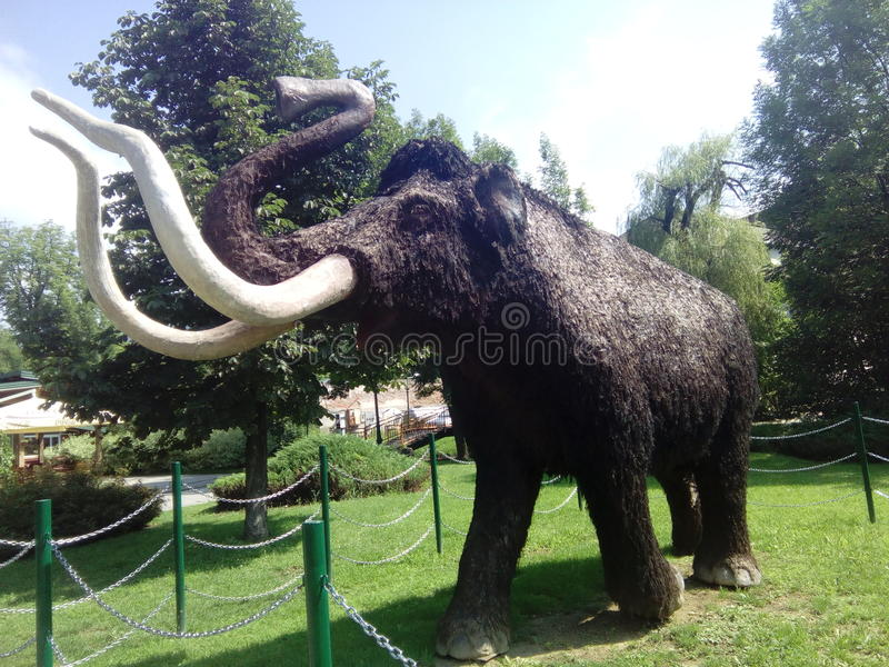 Mammouth de zoo à Sarajevo photographie stock libre de droits