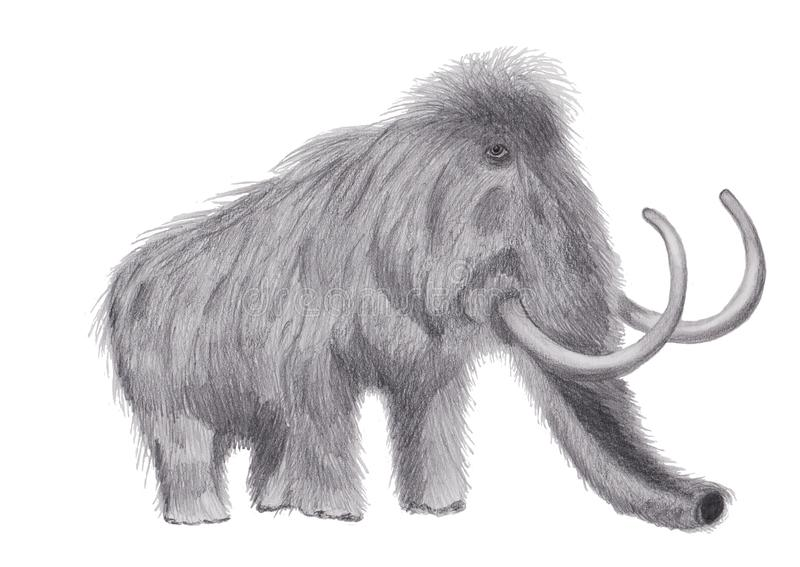 Mammouth laineux avec un crayon de graphite image stock