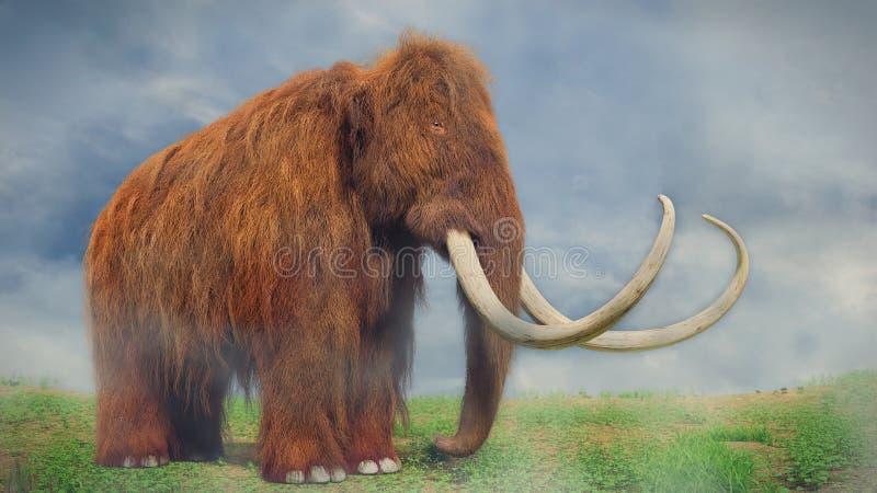 Mammouth laineux, mammifère préhistorique dans le paysage brumeux photo stock