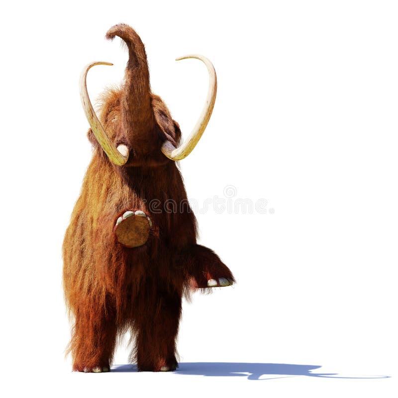 Mammouth laineux se tenant sur deux jambes, mammifère préhistorique d'isolement avec l'ombre sur le fond blanc photographie stock libre de droits