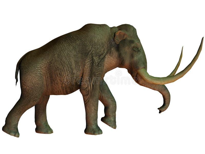 Mammut colombiano su bianco royalty illustrazione gratis