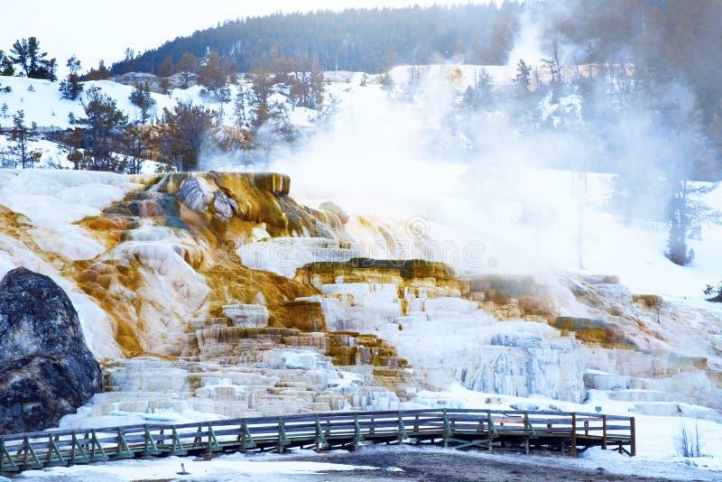 Mammut- heiße Quelle in der Nord-Yellowstone Nationalpark Landschaft stockfoto