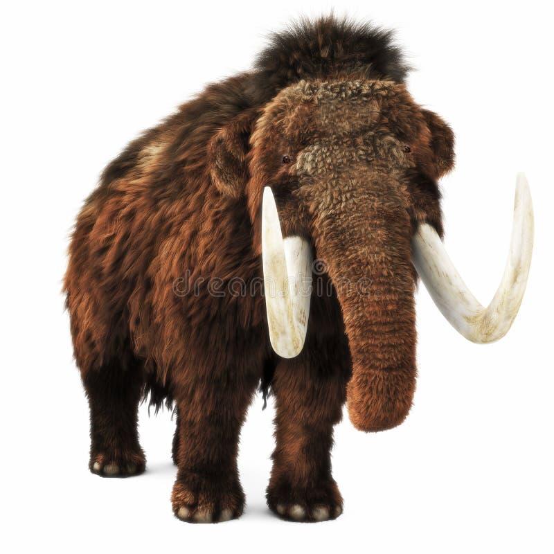 Mammut lanoso su un fondo bianco isolato royalty illustrazione gratis