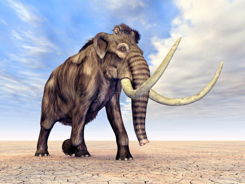 Mamut ilustracji