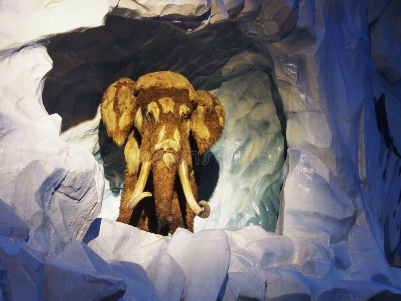 Mamut w parku rozrywki obrazy stock