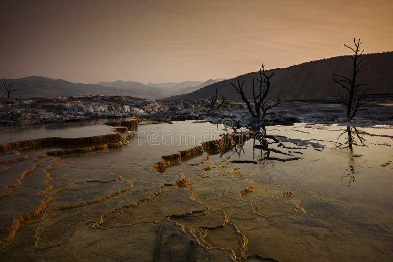 Mamuta taras przy wschodem słońca w Yellowstone obrazy stock