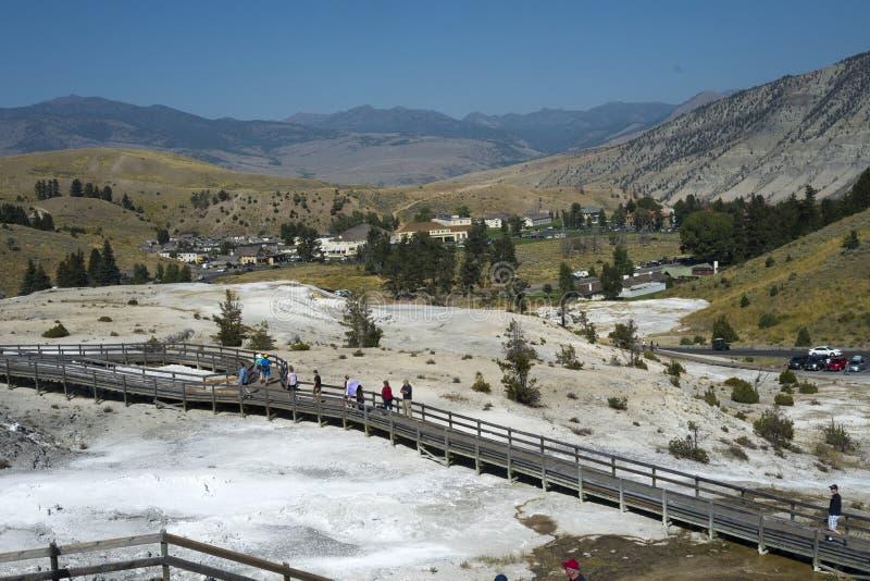 Mamutowy Gorących wiosen taras, Yellowstone park narodowy obraz stock