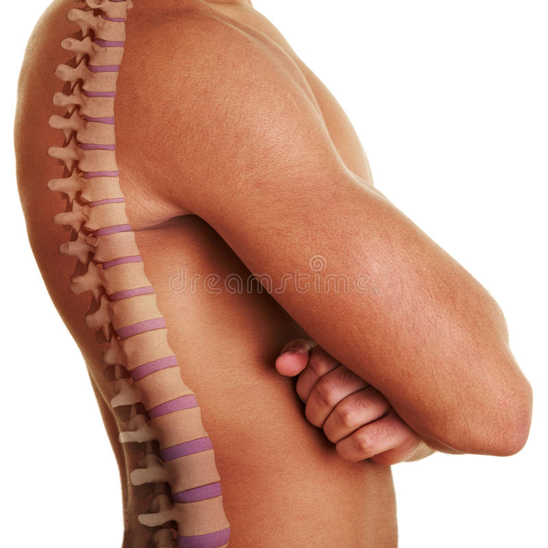 Man with 3D spine. Side view of man with 3D spine shown stock illustration