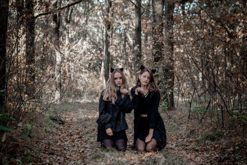 Man?aco e bruxa de Dia das Bruxas na floresta foto de stock royalty free