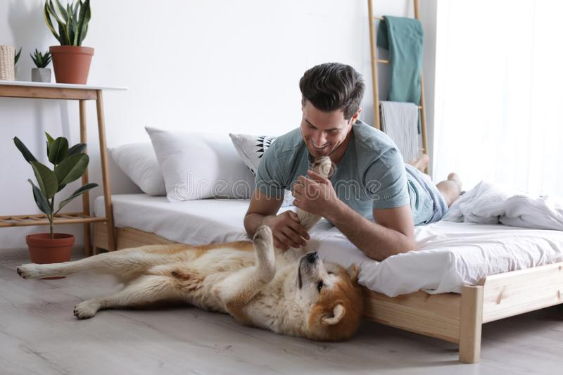 Man and Akita Inu dog in bedroom with houseplants royalty free stock photo