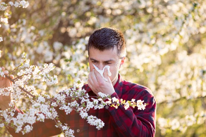 Man with allergy on pollen royalty free stock photo