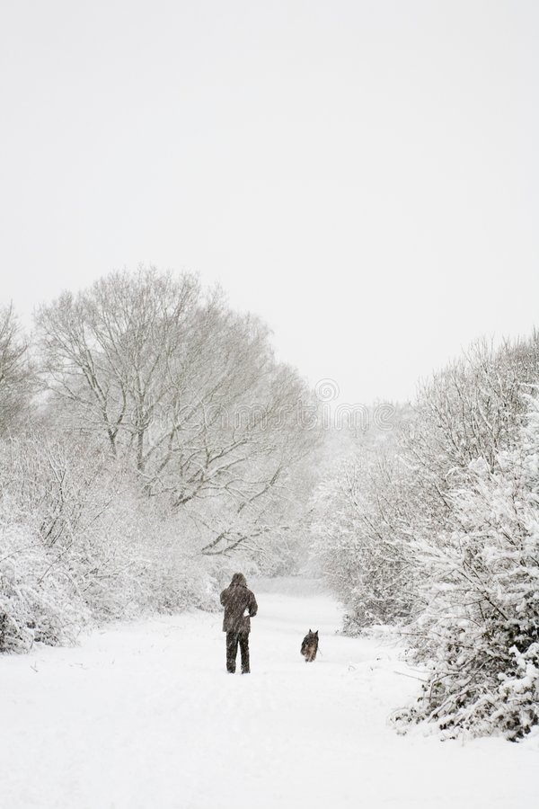 Free Man And Dog In Snow Stock Images - 3441614