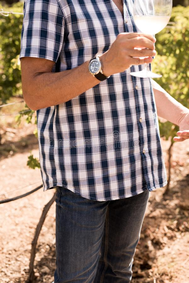 Man anseendet i ett vingårdinnehav per exponeringsglas av vin royaltyfria bilder