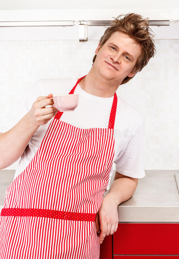 Download Man in apron stock image. Image of stand, ungroomed, chef - 28969673
