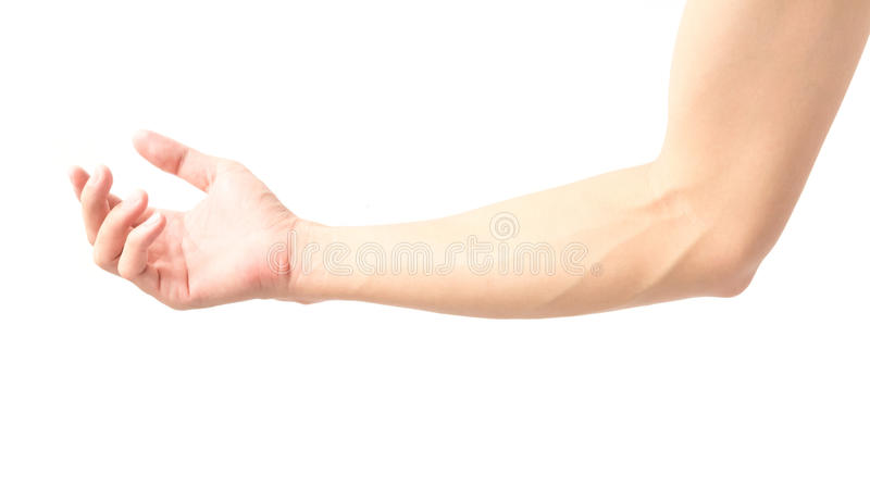 Man arm with blood veins on white background, health care and me. Dical concept royalty free stock image