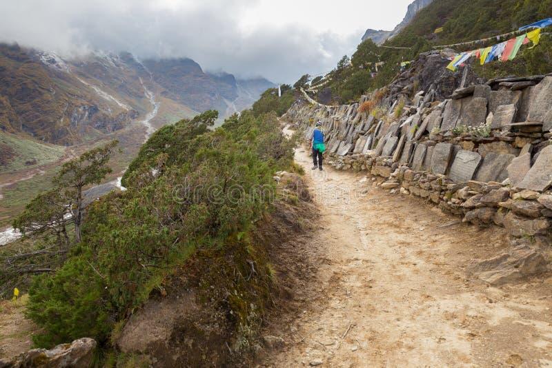 Man ascending mountait path trail. Man tourist ascending walking hiking mountain trail footpath mani mantra prayer stones, above deep canyon. Everest Base Camp stock photography