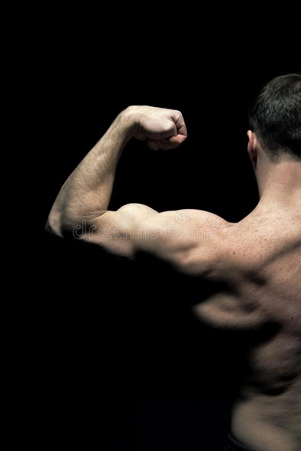 Man athlete with half torso, back view. Sportsman flex arm muscles. Bodybuilder show biceps and triceps. Workout and royalty free stock photos