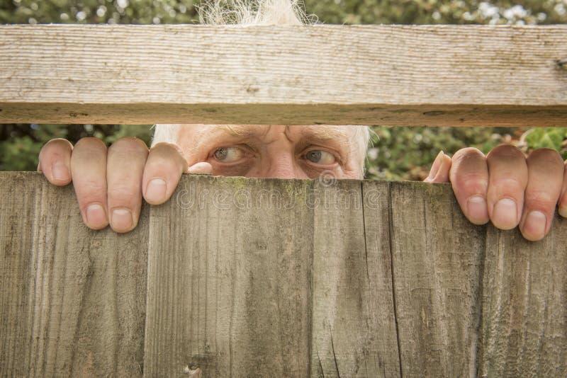 Man att spionera till och med ett trästaket i trädgården royaltyfri fotografi