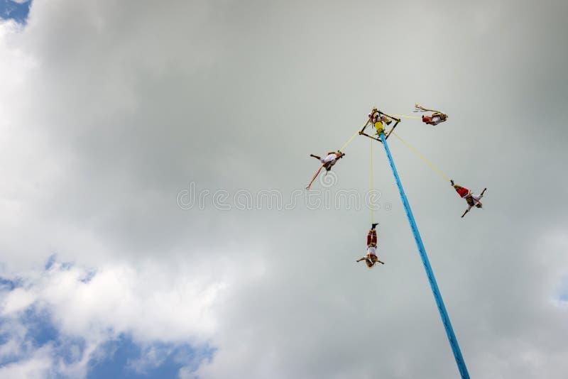 Man att utföra dansen av reklambladen Danza de Los Voladores i Elen Tajin, Mexico royaltyfria foton