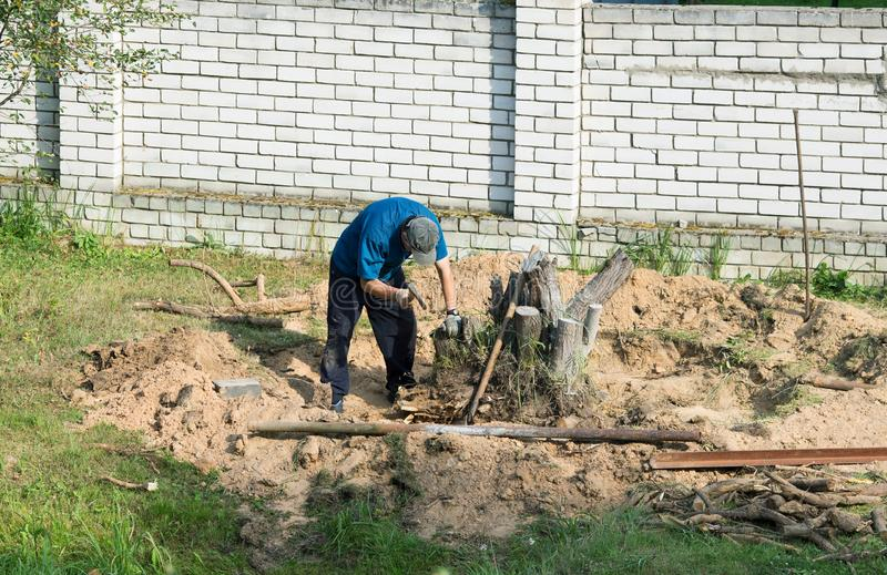 Man with an ax uproots a tree stump. On a summer day stock photography