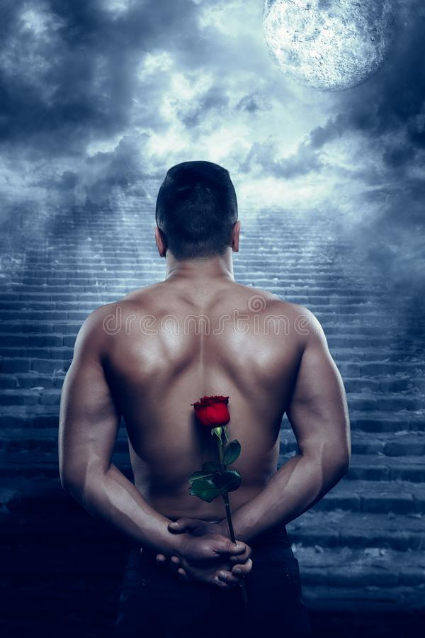 Man Back Rear View with Rose Flower Looking to Moon in Night royalty free stock images