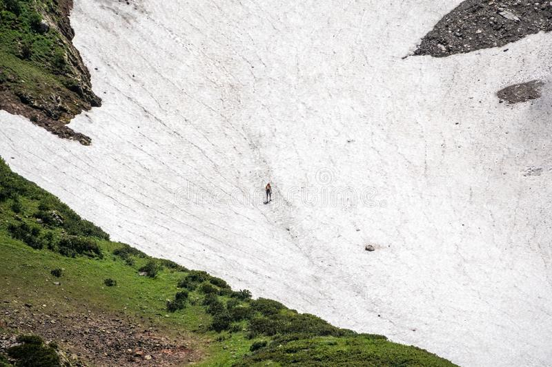 A man with a backpack climbs the snowy slope of the mountain at summer royalty free stock photos