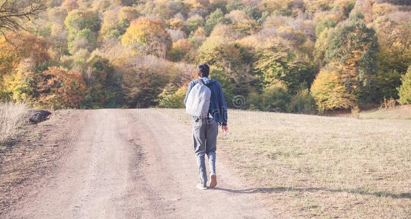 Man with a backpack going to forest royalty free stock photo