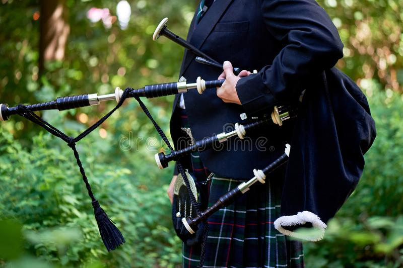 A man with a bagpipe, a kilt in a cage with a green and red stripe. Culture. The details of the skirt of the kilt and. A man with a bagpipe, a kilt in a cage royalty free stock photo