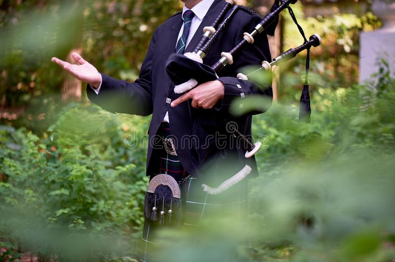 A man with a bagpipe, a kilt in a cage with a green and red stripe. Culture. The details of the skirt of the kilt and. A man with a bagpipe, a kilt in a cage royalty free stock photography