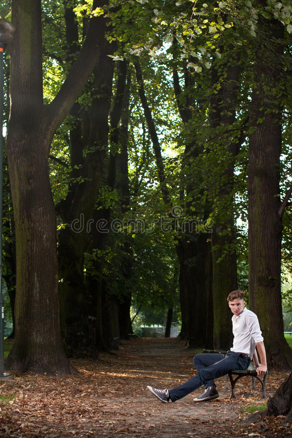 Download Man On A Banch In The Park At Sunrise Stock Image - Image: 20966337