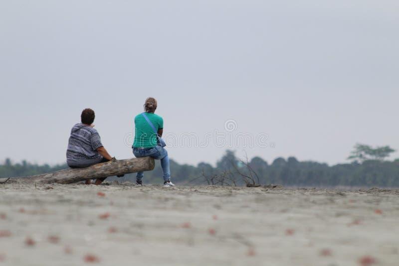 Man, Beach, Shore, Sand royalty free stock image