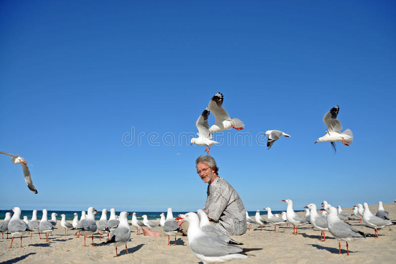 Download Man On Beach Surprized By Flock Of Seagulls Stock Image - Image: 26576301