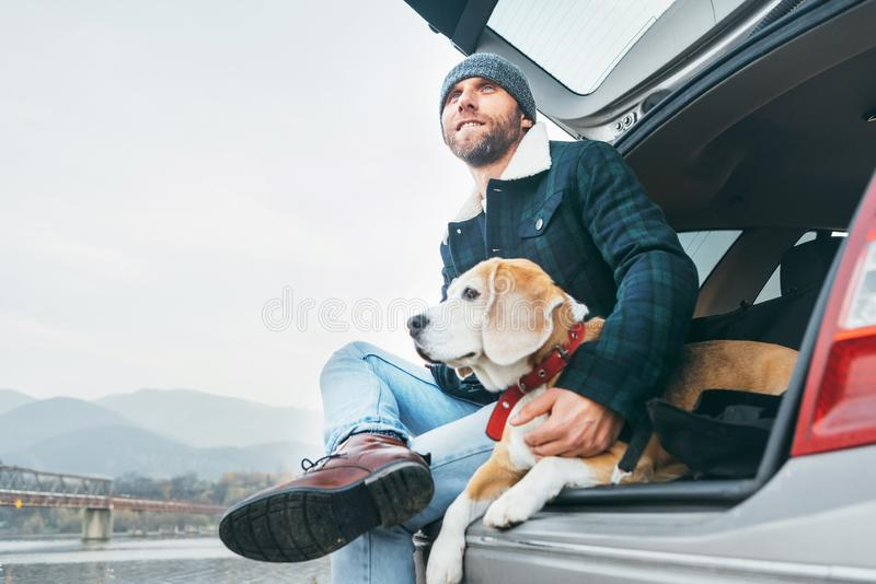 Man with beagle dog siting together in car trunk royalty free stock image
