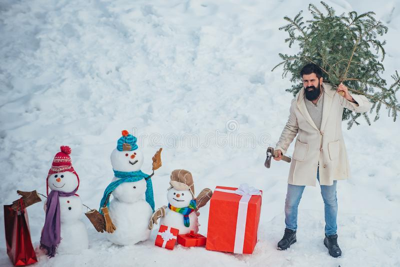 Man with beard bears home a Christmas tree. Winter emotion. Merry Christmas and Happy Holidays. Young lumberjack bears. Fir tree in the white snow background royalty free stock photography
