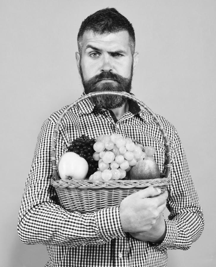 Man with beard holds basket with fruit isolated on green background. Farming and gardening concept. Guy holds homegrown. Harvest. Farmer with confused face stock image