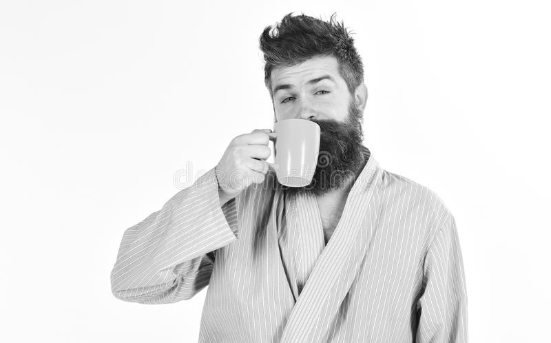 Man with beard and mustache holds mug of coffee, isolated on white. Morning coffee concept. Macho in bathrobe drinks tea stock photo