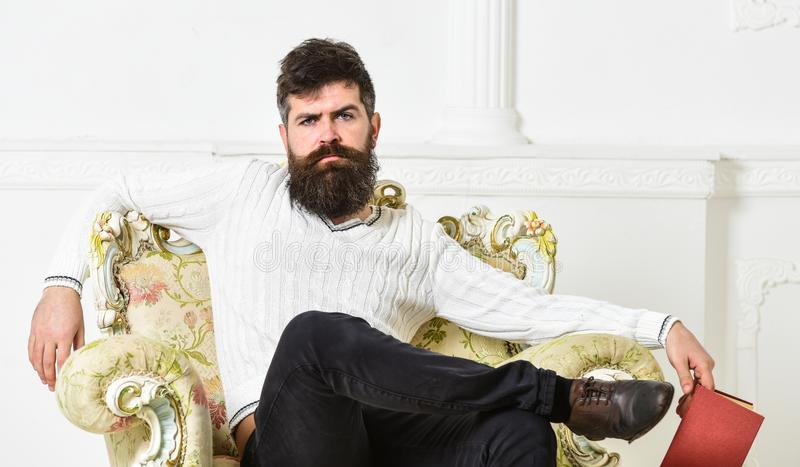Man with beard and mustache sits on armchair, holds book, white wall background. Connoisseur on thoughtful face finished. Reading book. Connoisseur of stock image