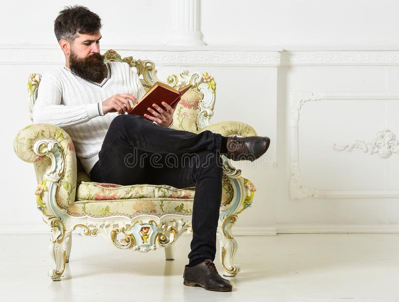 Man with beard and mustache sits on armchair and reading, white wall background. Connoisseur of literature concept stock photos