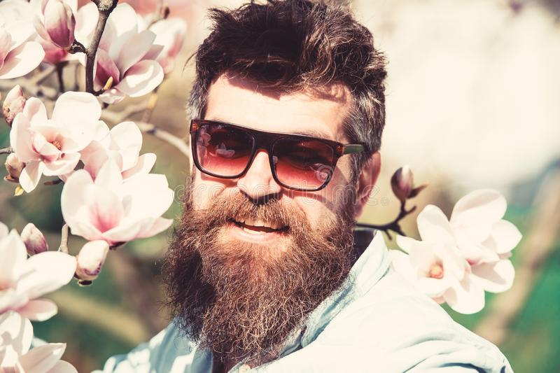 Man with beard and mustache wears sunglasses on sunny day, magnolia flowers on background. Fashion concept. Guy looks royalty free stock photos