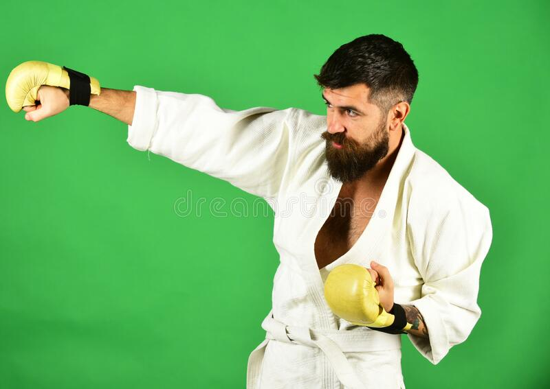 Man with beard in white kimono on green background. Combat master practices attack posture. Karate man with concentrated face in uniform and golden boxing royalty free stock images