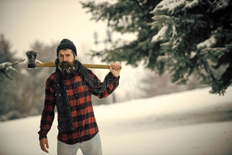 Man with beard in winter forest with snow hold axe. Christmas hipster lumberjack with ax in wood.. Wanderlust, hiking and travel. New year man in snowy cold royalty free stock image